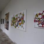 Expo marie d'anglet christophe napias